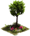 D_SS_ColonialAge_OrnamentalTree-6a9159a20.png