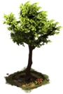 D_SS_StoneAge_Tree.png